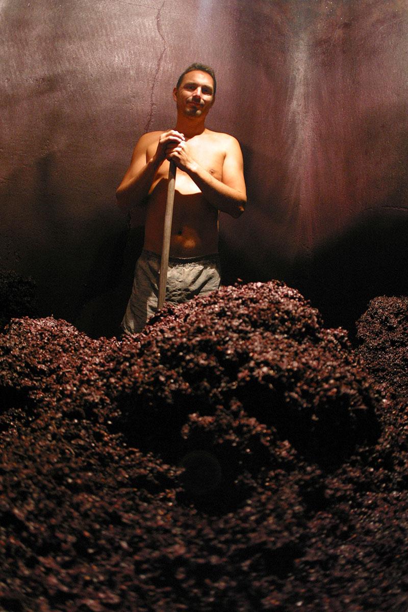 travail de décuvage cuve vin rouge