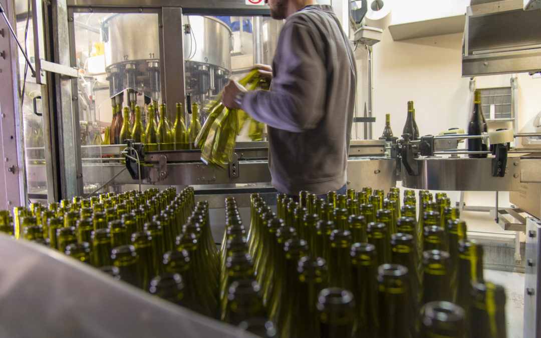 Mise en bouteille au domaine des nouveaux millésimes disponibles