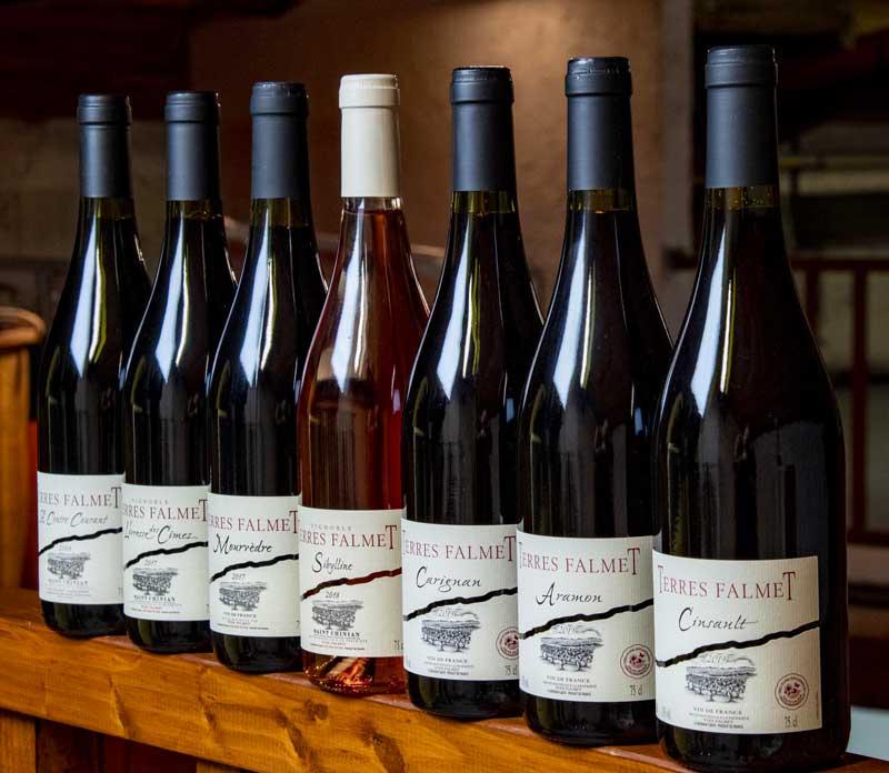 vins saint chinian languedoc